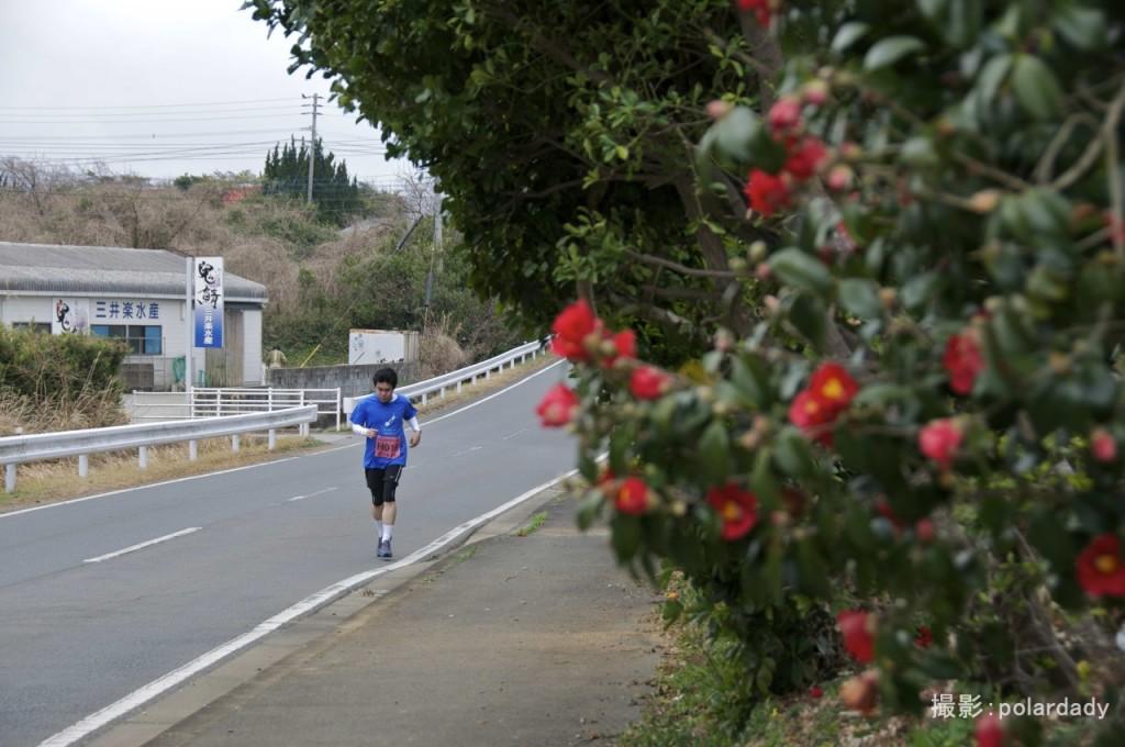 つばきのある景色の中で走る